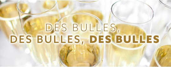 Les Grands Vins de CHAMPAGNE (Biodynamie, Extra Brut, Brut Nature, Terroir, Grands Vins)