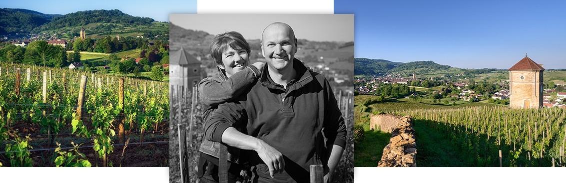 Notre sélection de grands vins du Jura | Walter Wine