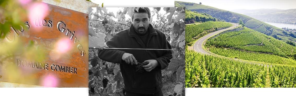 Notre sélection de grands vins de Rhône | Walter Wine