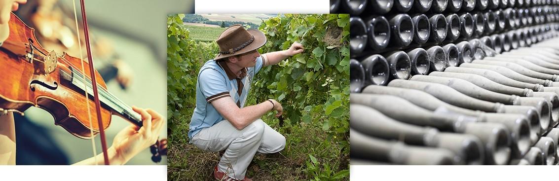 Notre sélection de nos grands vins de Champagne | Walter Wine