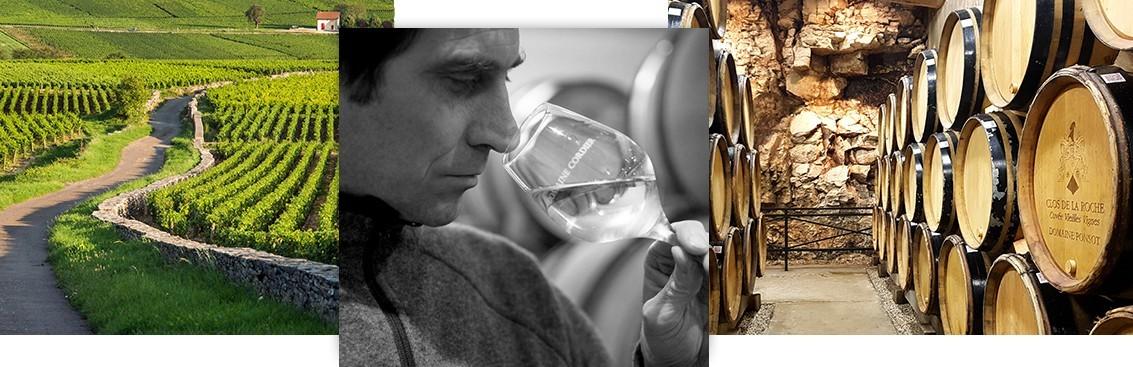 Sélection de grands vins de Bourgogne | Walter Wine