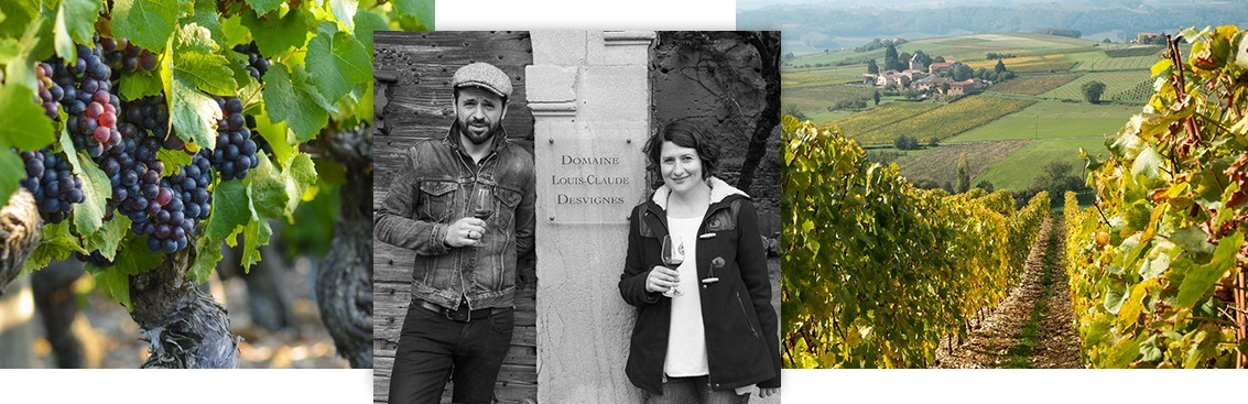 Vente vins Beaujolais : acheter les meilleurs Beaujolais avec Walter W